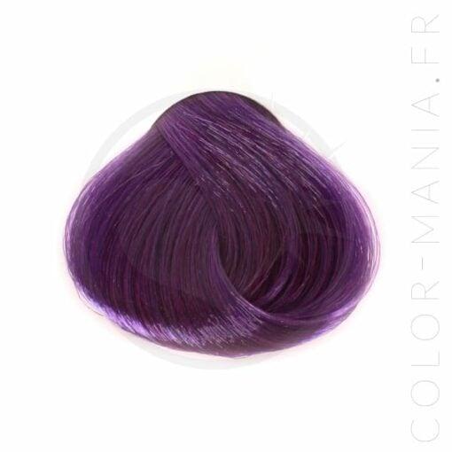 Coloration Cheveux Violet Prune – Stargazer | Color-Mania