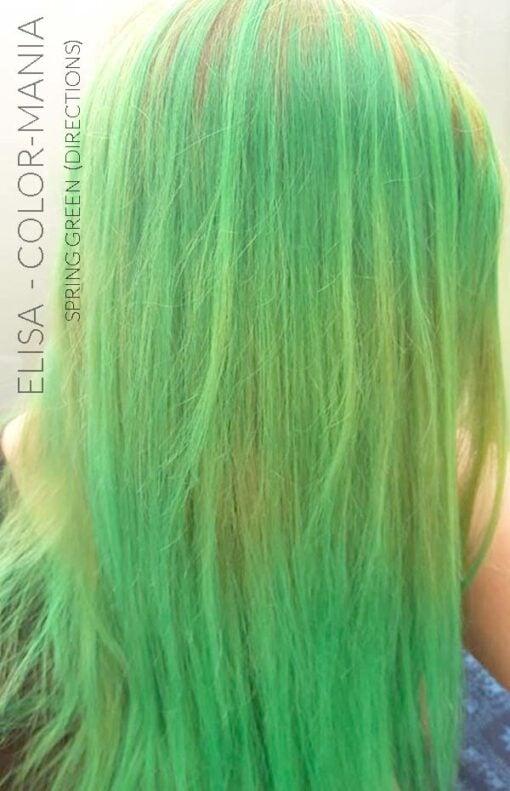 Merci Elisa :) Coloration Cheveux Vert Printemps - Directions | Color-Mania