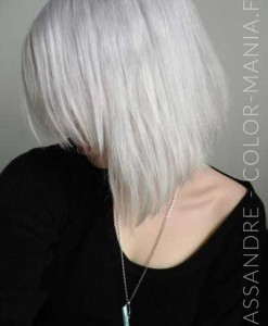 Cassandre Silver Hair La Riché Directions - Color-Mania