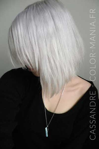 Cassandre Silver Hair The Riché Directions - Color-Mania