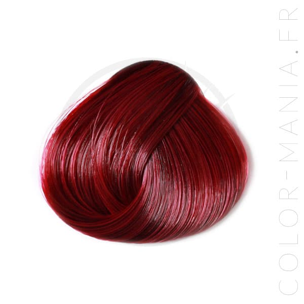 Coloration Cheveux Tulipe Noire - Directions |Color-Mania