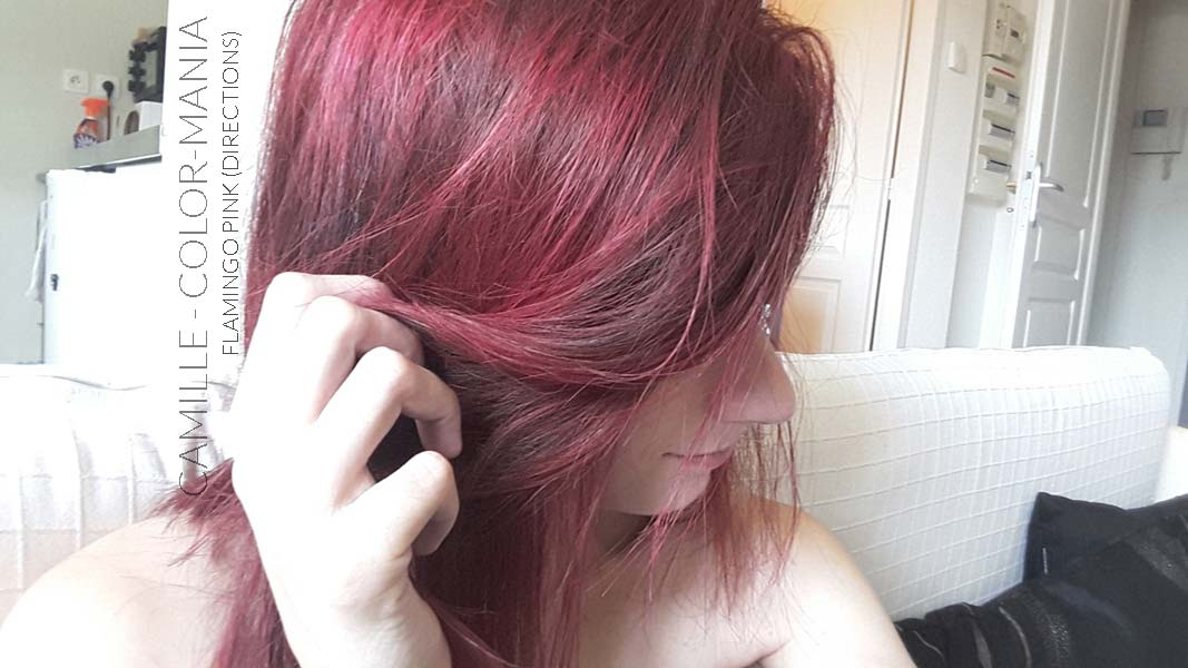 Merci Camille :) Coloration Cheveux Flamand Rose - Directions - Base brune peu decoloree | Color-Mania
