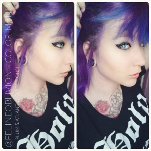 Merci FelineOblivion :) Coloration Cheveux Violet Prune – Directions | Color-Mania