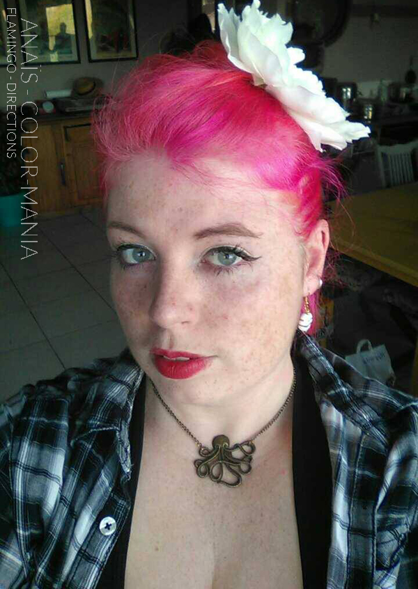 Rose Flamand Rose Diluida - Gracias Anaïs :) Hair Color Flamingo Rose - Direcciones