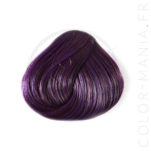 Coloration Cheveux Violet Prune – Directions   Color-Mania