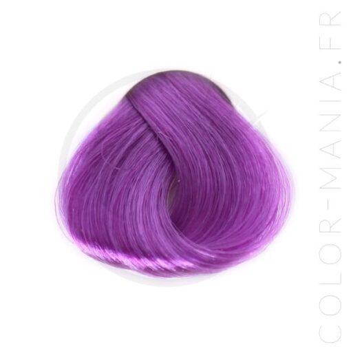 Coloration Cheveux Violette - Stargazer   Color-Mania
