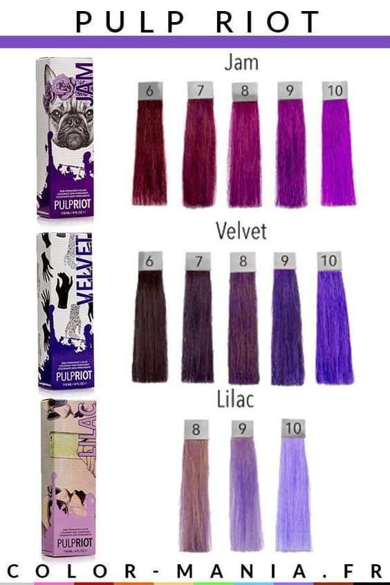 Nuancier Violet Pulp Riot