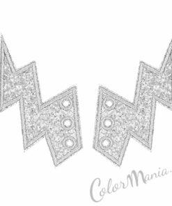 Eclairs de Glitter Plata para Zapatos Shwings