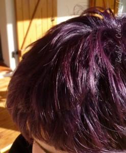 La rich directions nouvelles colorations de cheveux - Violet prune couleur ...
