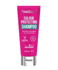 Shampoing Prolongateur de Couleur 250 mL – Directions 1