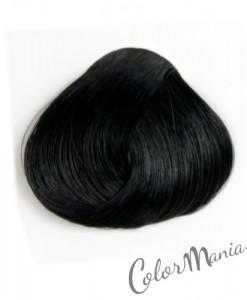 Coloration Cheveux Noir Ebène – Directions