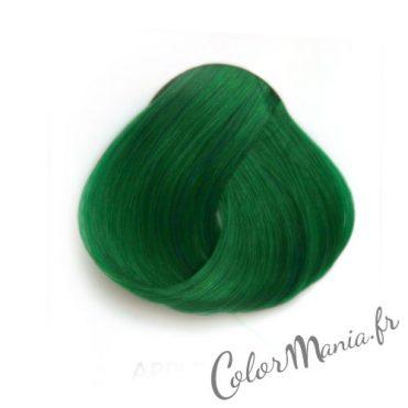 Coloration Cheveux Vert Pomme – Directions