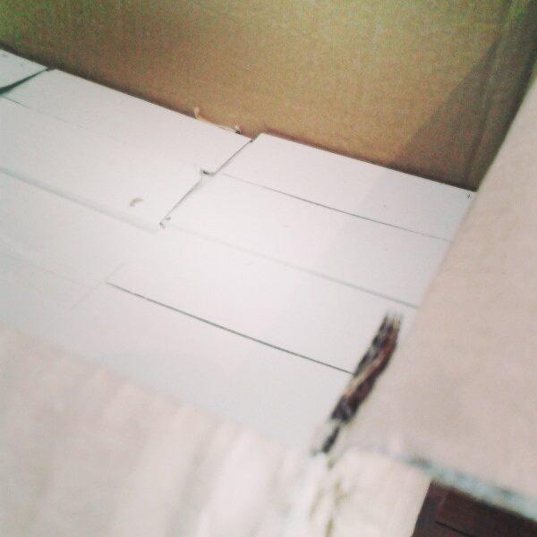 Les nouveautés encore carton le jour de leur arrivée dans nos locaux !