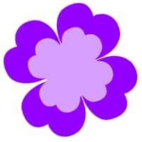 test color mania fleur