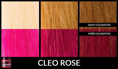 cleo-rose