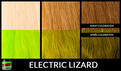 electric-lizard