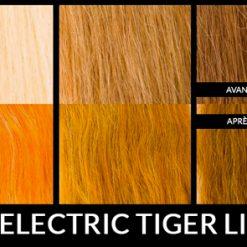rendu de la coloration electric tiger lily sur différente couleur de cheveux