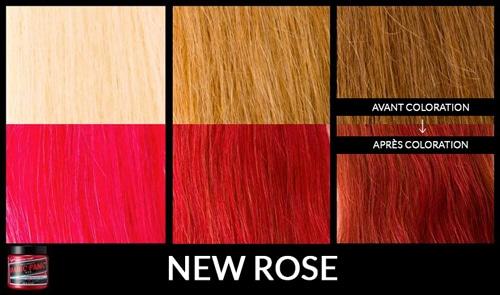 new-rose
