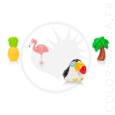 Gloss Palmier - Parfum Noix de Coco | Color-Mania