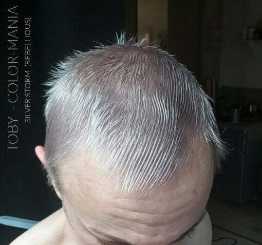 Merci Toby :) Coloration Cheveux Toner Gris Silver Storm - Rebellious | Color-Mania