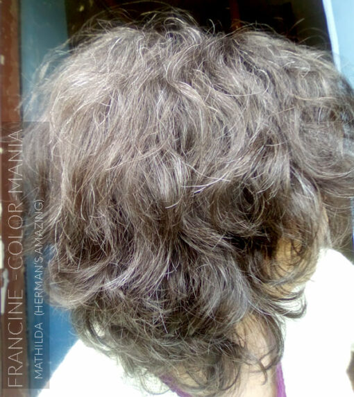 Merci Francine :) Coloration Cheveux Gris Granny Mathilda Grey - Herman's Amazing | Color-Mania