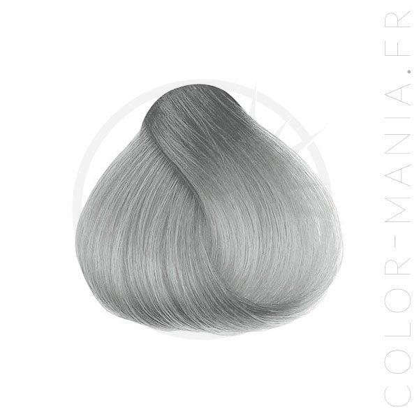 La Coloration Cheveux Gris Sylvia Grey - Herman's Amazing | Color-Mania