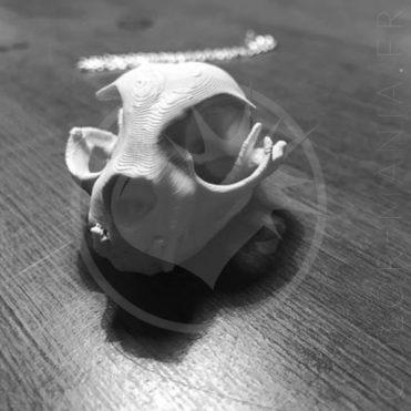 Collier Crâne de Chat Blanc | Color-Mania