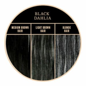 Coloration noire Black Dahlia de Herman's Amazing chez Color-Mania
