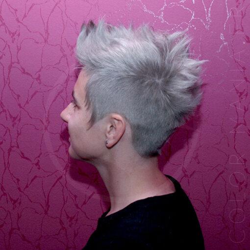 Soin Repigmentant Gris Intense Ash Silver | Color-Mania