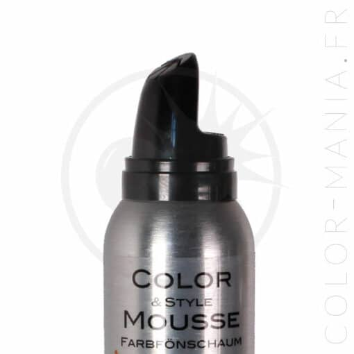 Mousse Colorante Color & Style - Omeisan | Color-Mania.fr